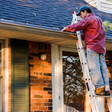 What You Need to Know About Roof Cleaning in Fall and Winter